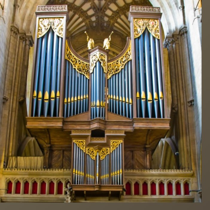 Wells-Cathedral-Organ.jpg